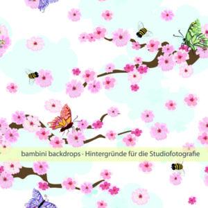 Kirschblüten_bd_001